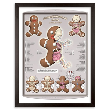 1xRUN-Jason-Freeny-Gingerbread-Dissected-16x22-WEB01-1
