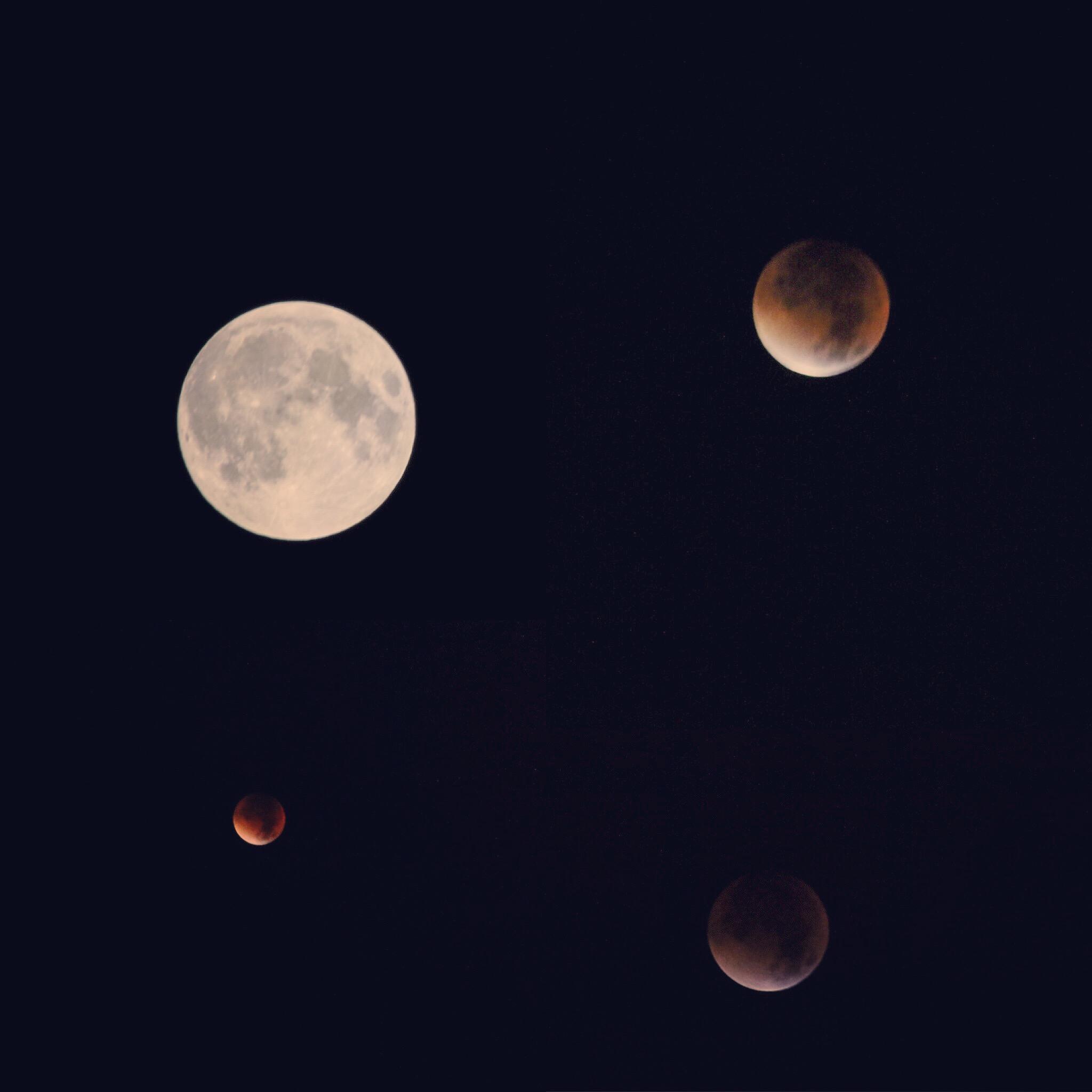 De nacht van zondag op maandag was kort, maar daardoor zag ik wel de rode maan!