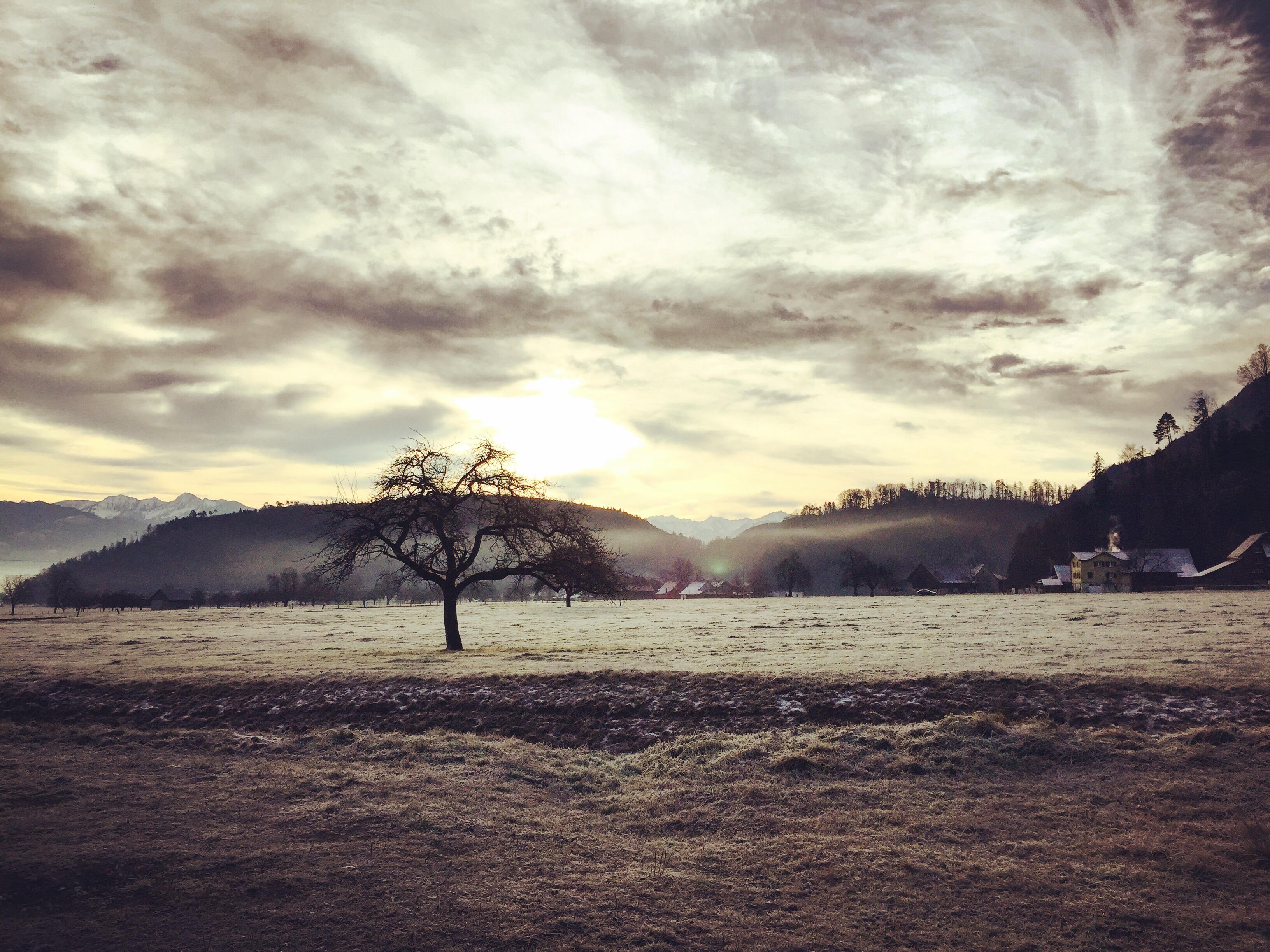 Dinsdagochtend ga ik weer wandelen met Liza. Het is iets kouder dan maandag en het land is dan ook wit. Zo mooi weer. Ik geniet daar echt van.