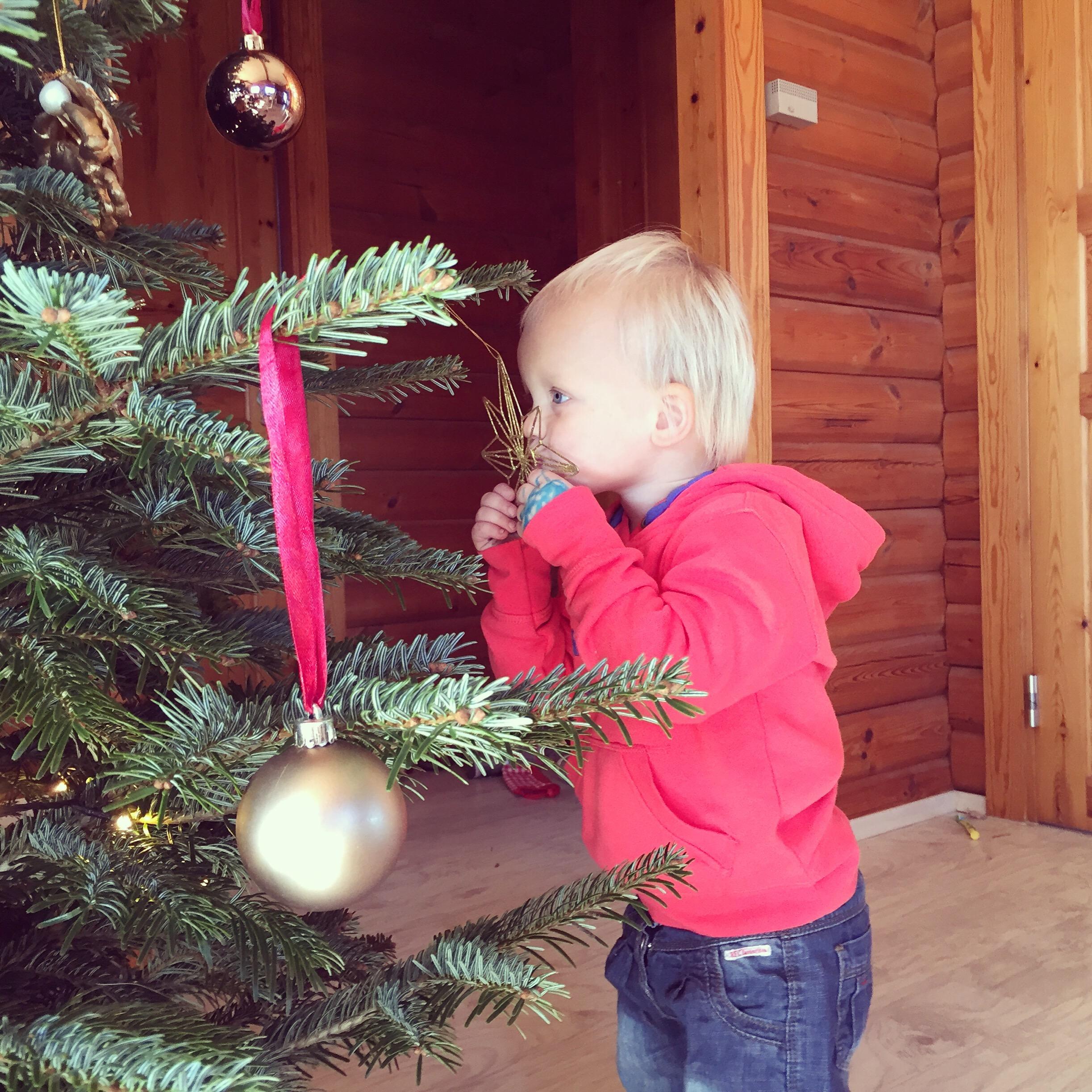 Die kerstboom weet wat. Iedere kerstbal wordt gekust en als Liza naar buiten of naar bed gaat, dan wordt iedere bal gedag gezegd. Schattig.