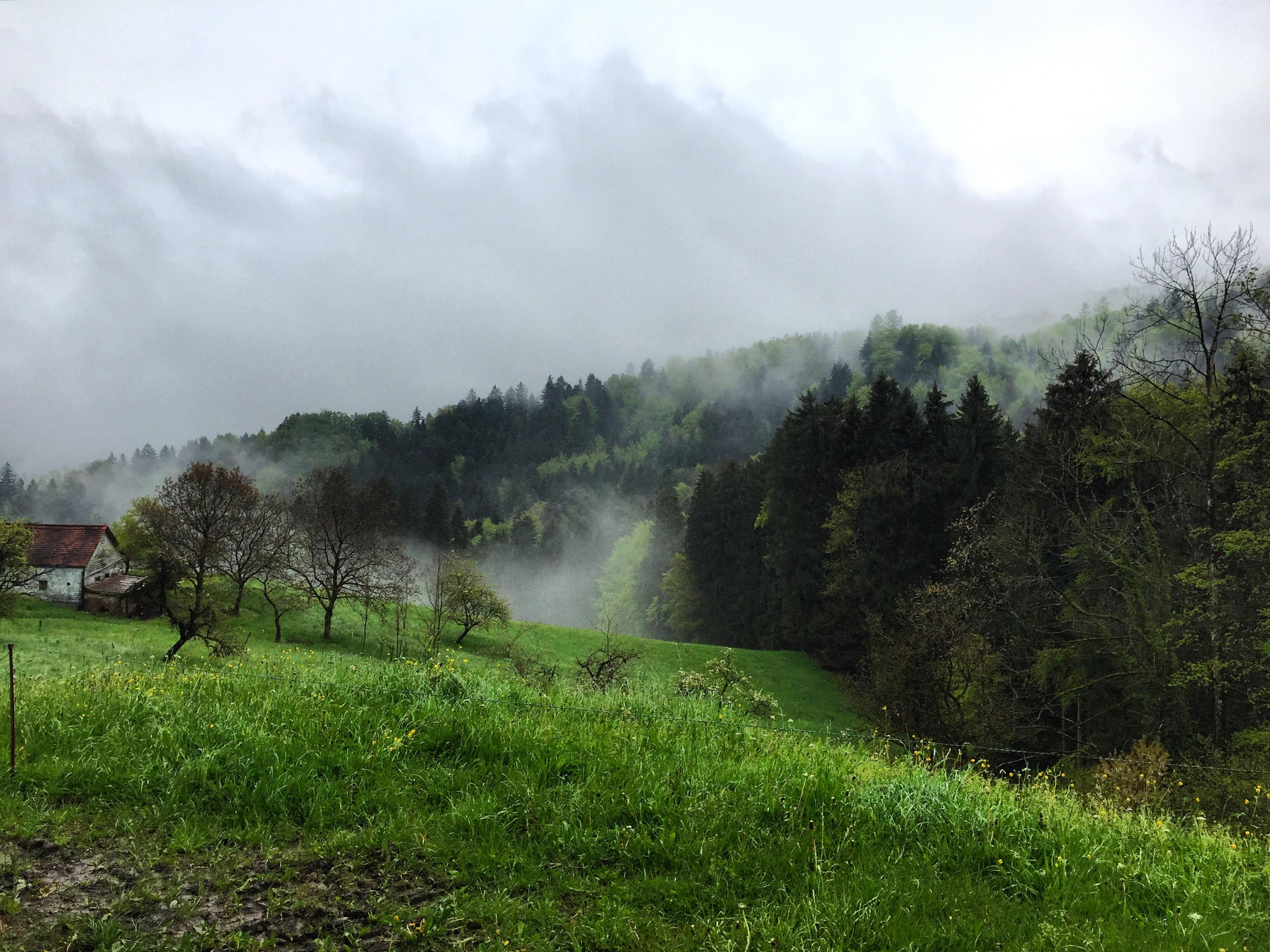 Maandag ging ik weer lopen. Toen we 150 meter de berg opgelopen hadden, kregen we dit uitzicht. Ik vind dat tof, zo dromerig en sprookjesachtig