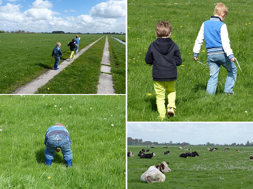 struinen door de polder