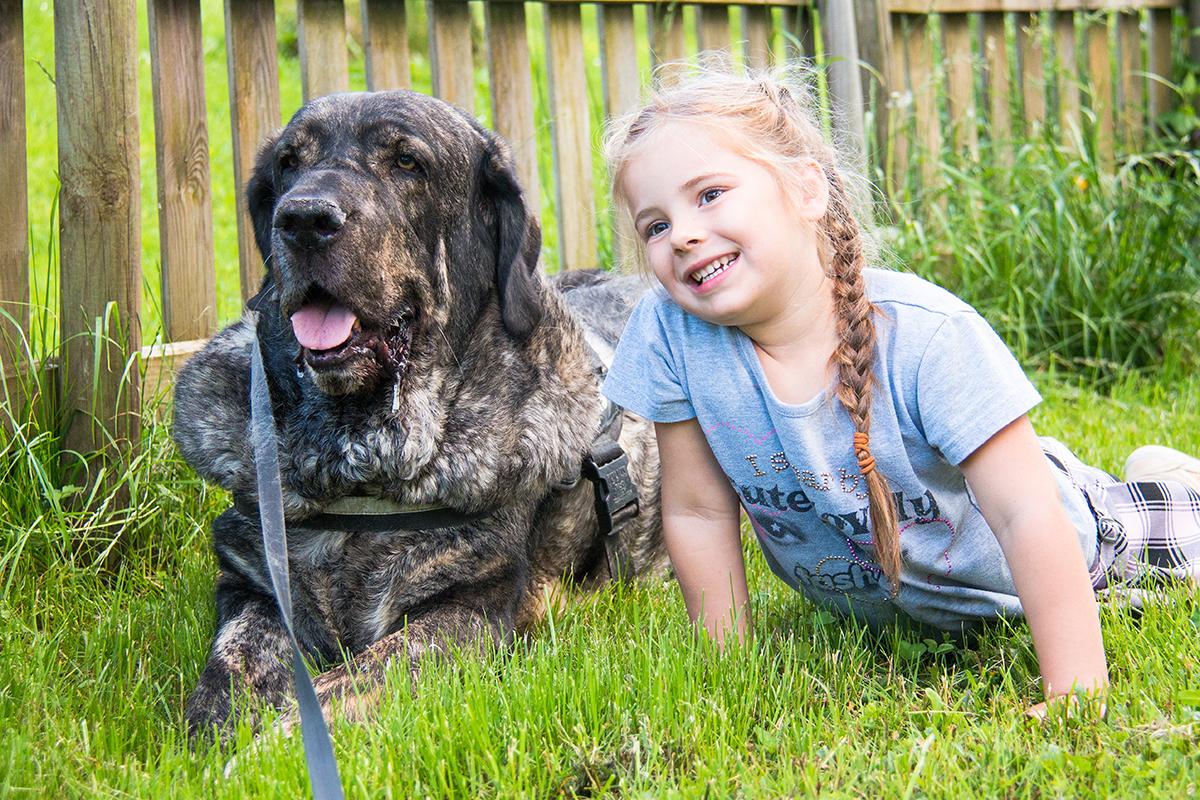 8 tips tegen hondenharen!