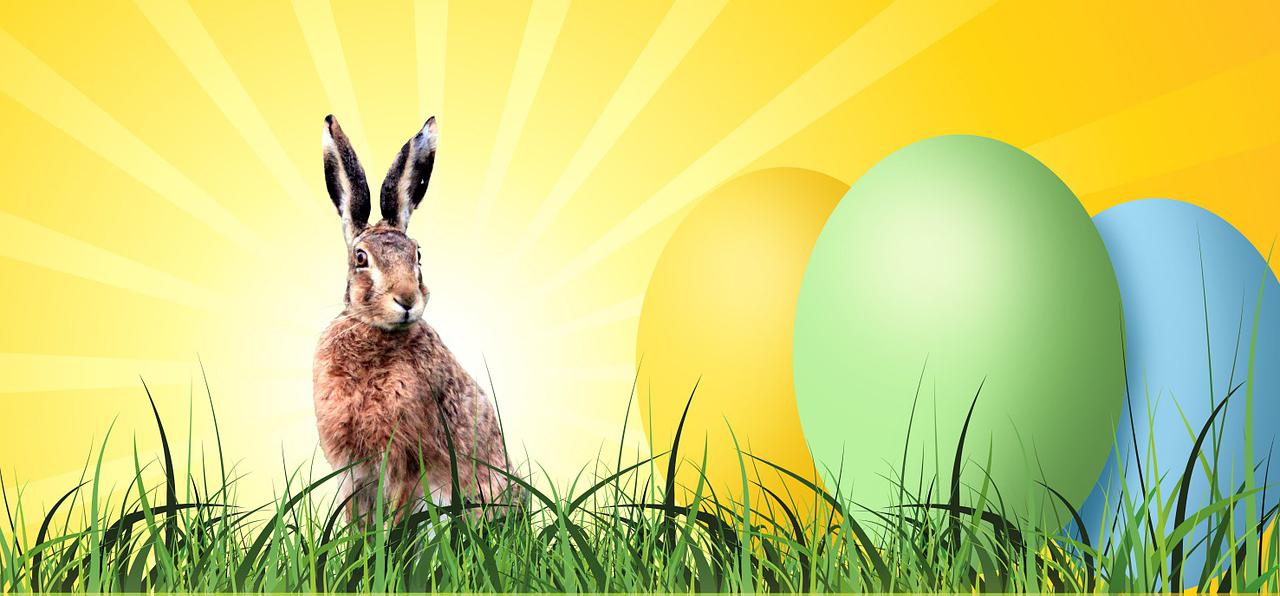 Last-minute: koop de leukste producten voor Pasen!