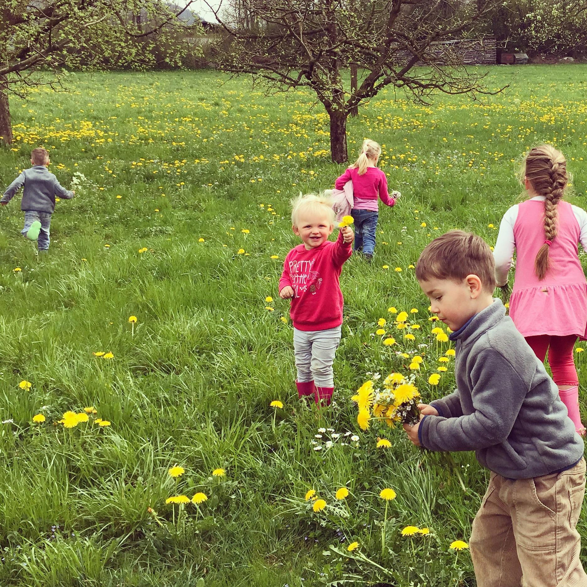 Bloemen plukken was een groot succes!